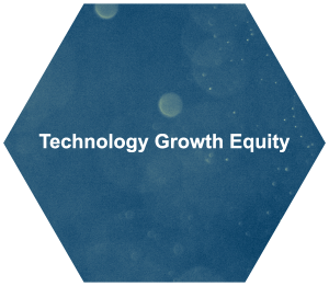 Secure Technology Growth Equity